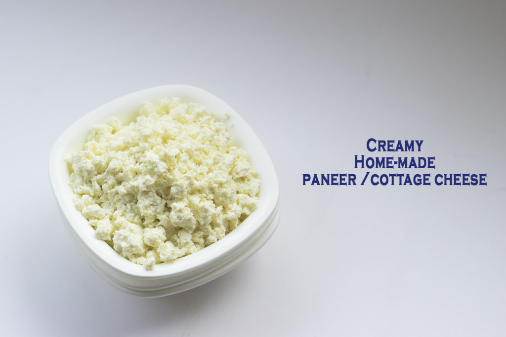 How to make creamy homemade Paneer | Cottage Cheese in 5 minutes