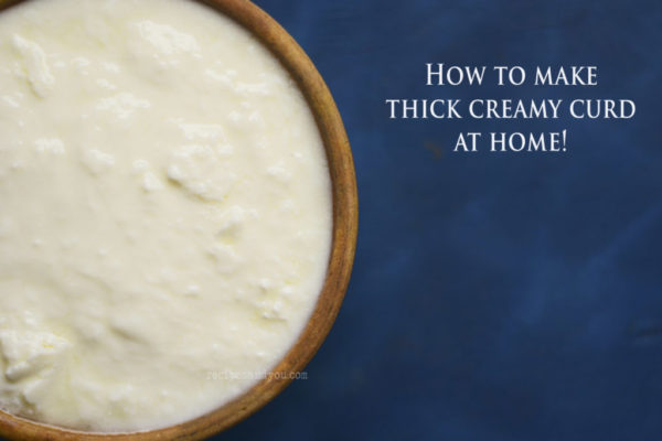 homemade curd recipe